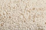 Marokkaans berber tapijt Maroc Berber 66_