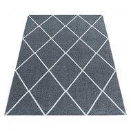 Modern-vloerkleed-Riant-zilver-4601